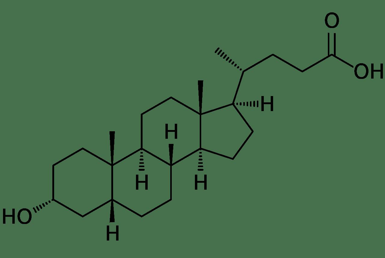 لیتوکولیک اسید