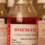 خرید محیط کشت DMEM | فروش محیط کشت DMEM | نمایندگی محیط کشت DMEM